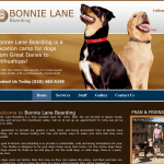 Web Design - Bonnie Lane SnapShot - Queen Creek AZ