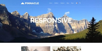 Web Design - Pinnacle Theme Screen Shot - Anaheim CA