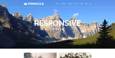 Web Design - Pinnacle Theme Screen Shot - Anaheim CA
