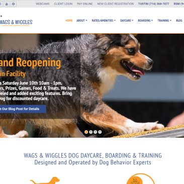 Wags & Wiggles Dog Daycare – Tusin & Rancho Santa Margarita, California