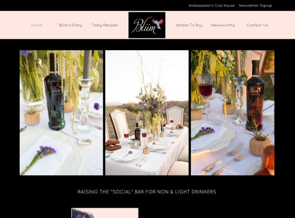 Web Design - Blum - Westlake VIllage CA