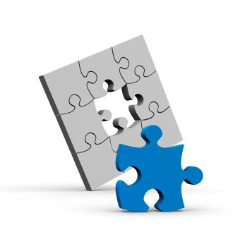 Web Design - WDYW Puzzle - Chandler AZ