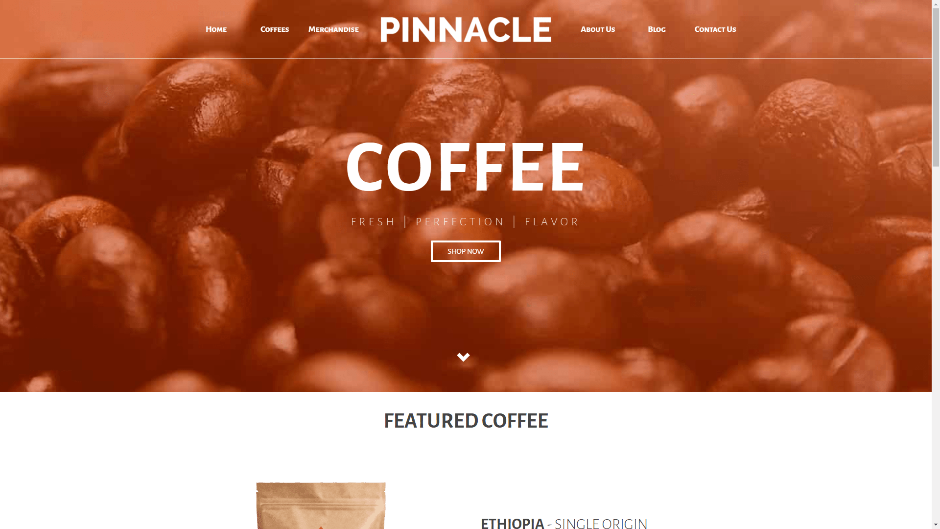 Web Design - Pinnacle Store - Walnut Creek CA