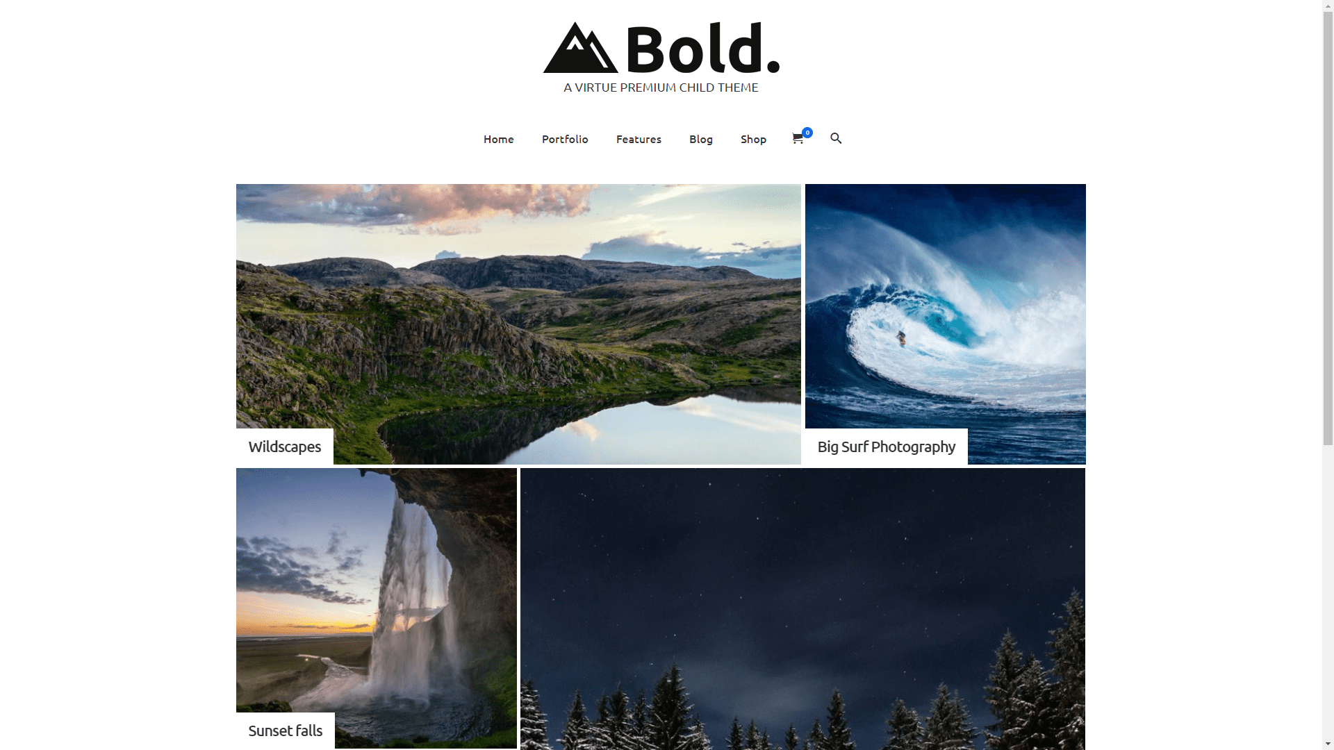Web Design - Virtue Bold Portfolio - Chandler AZ